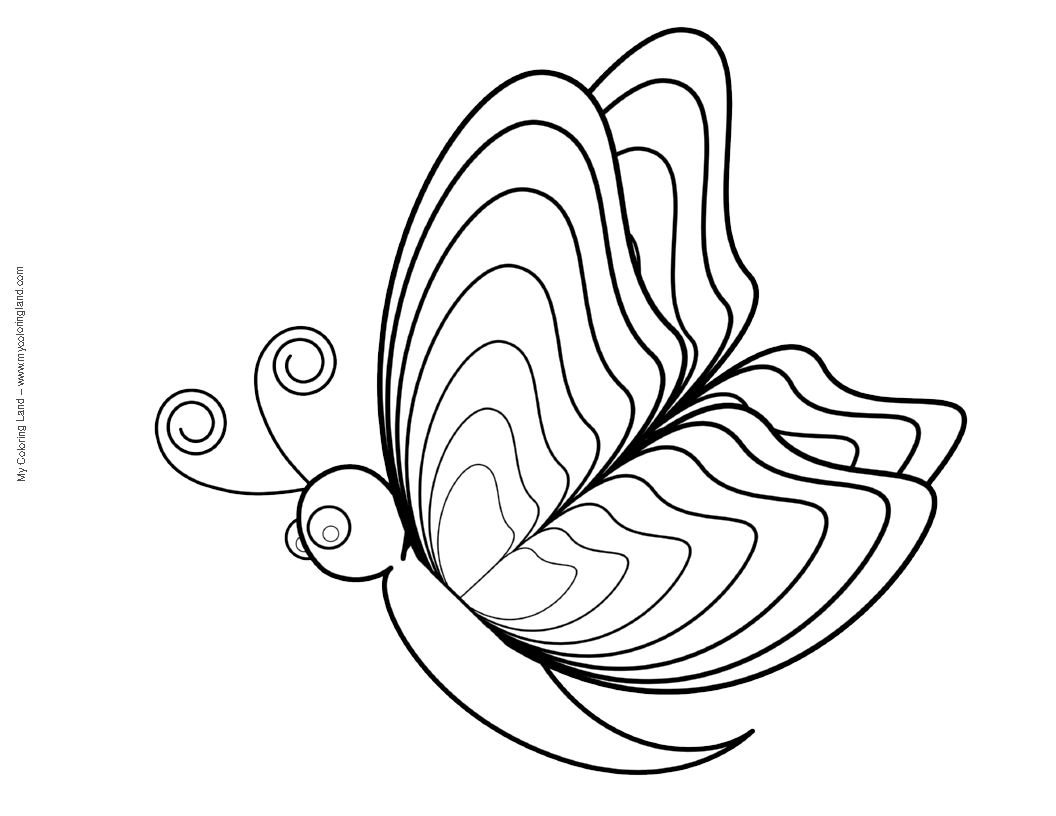 Butterfly cocoon coloring pages - Did You Find The Perfect Butterfly Page To Be Coloured We Added Few Sheets With Butterflies And Flowers But If You Prefer Coloring Pages Of Flowers