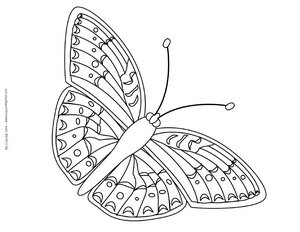 cute butterfly colouring sheet
