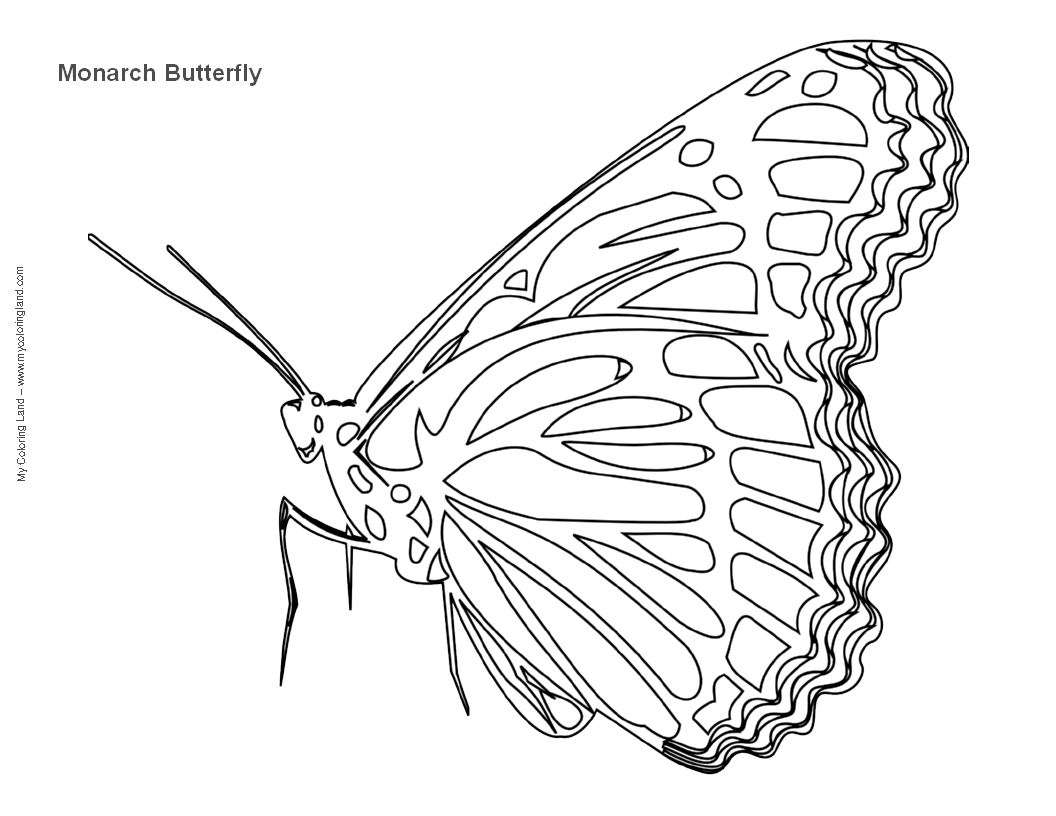 free coloring pages of heart and butterfly