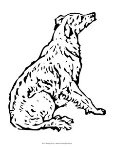colouring pages of dogs