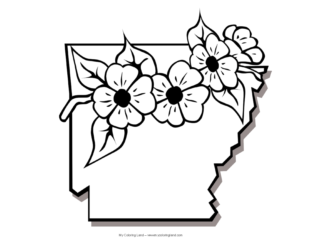 Arkansas State Flower Coloring